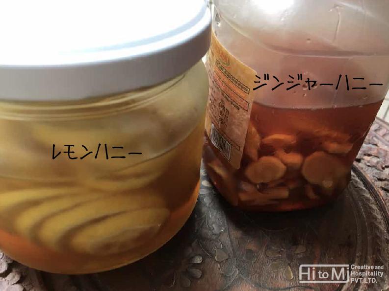 honeyginger01